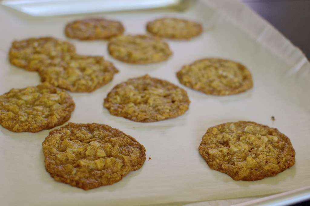 Passover Coconut Cookies