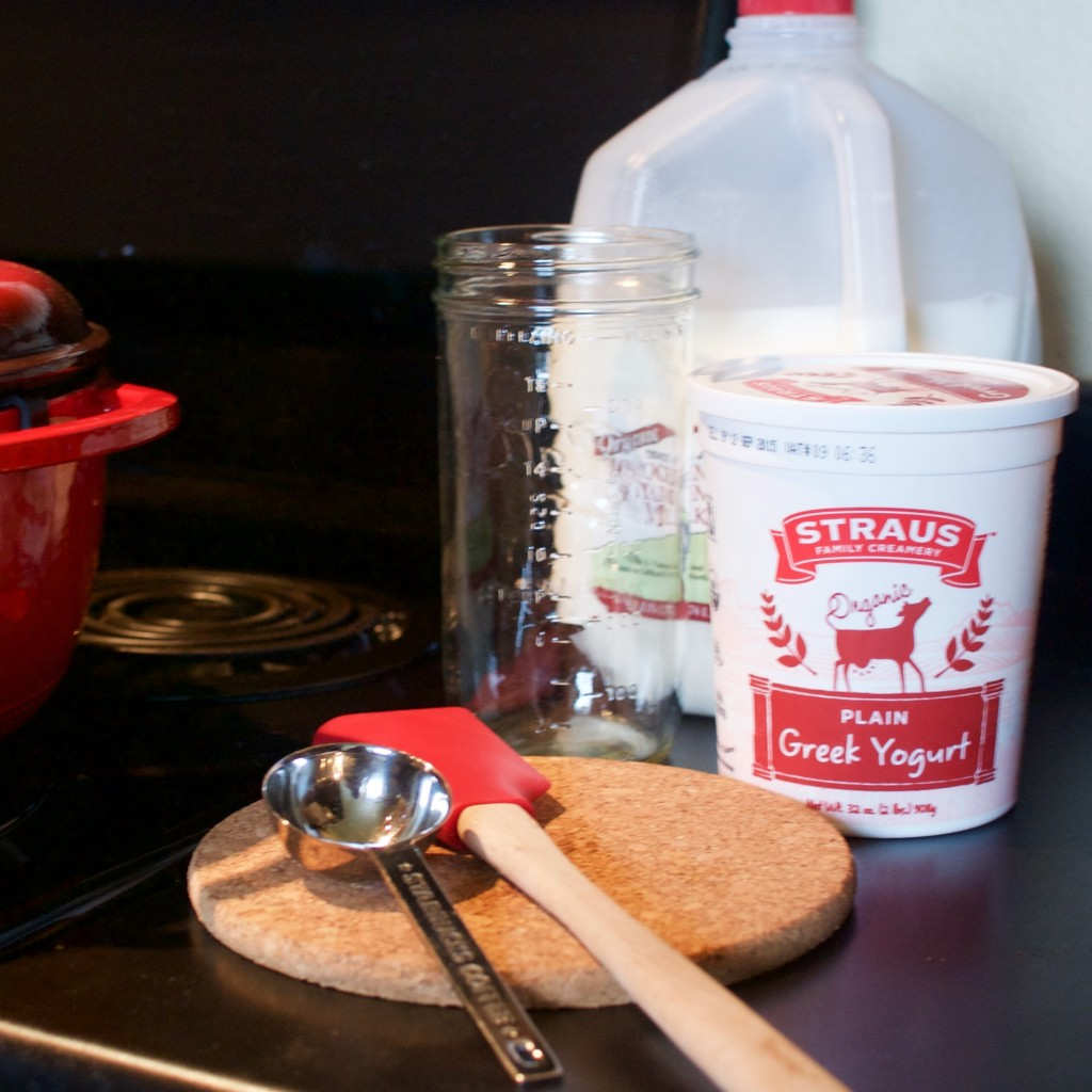 Nosherium Homemade Yogurt