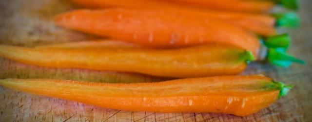 Nosherium Carrot Cover